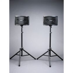 Pair Bose Panaray 802 and stands